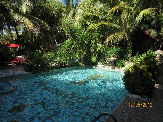 Maruba Resort Jungle Spa: One of the pools