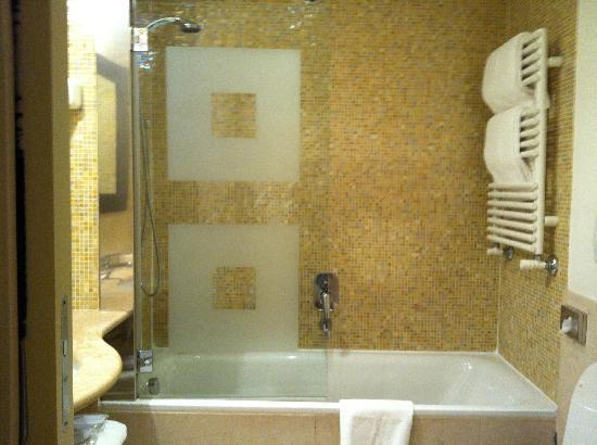 Enterprise Hotel: Bath with shower unit
