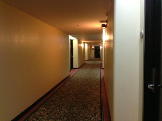 LaGuardia Plaza Hotel - New York: Hallway
