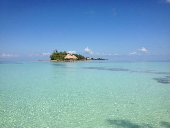 Thatch Caye Resort: Water for miles