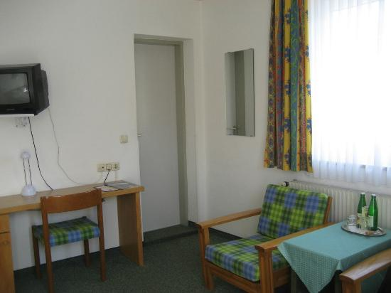 Zum Hirschen Gasthaus Hotel: Older TV -didn't bug us because we were there for the castles, not tv
