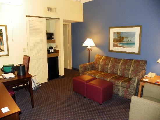 Embassy Suites by Hilton Boca Raton: Our front living room and frig