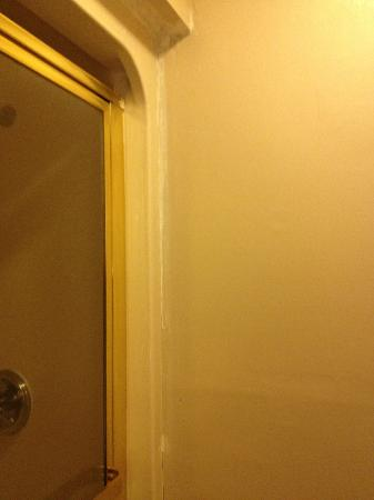 Americas Best Value Inn : Recaulked shower that was not repainted