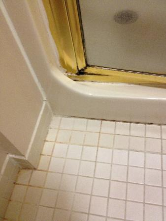 Americas Best Value Inn : Rust and mold and door would not close