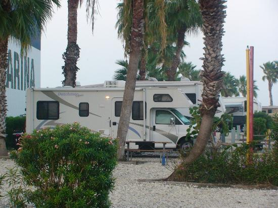 South Padre Island KOA: This is the site we moved to after...out of the wind and not by the road going into Pier 19