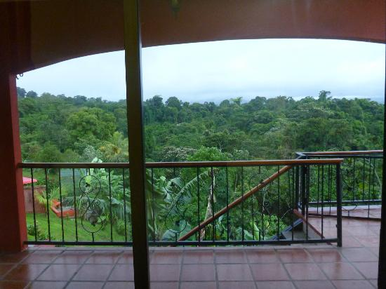 Toad Hall Hotel Arenal: Balcony View