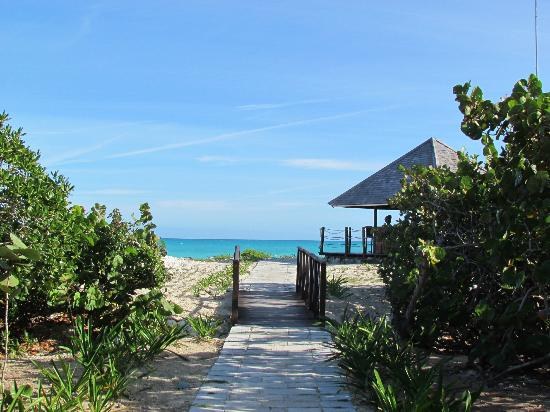 Royalton Cayo Santa Maria: Chemin vers la plage