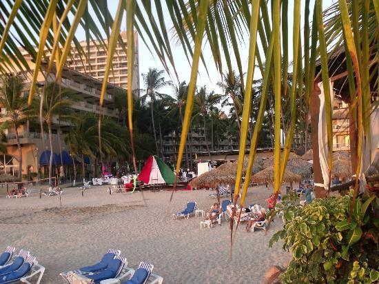 빌라 델 팔마르 호텔 사진
