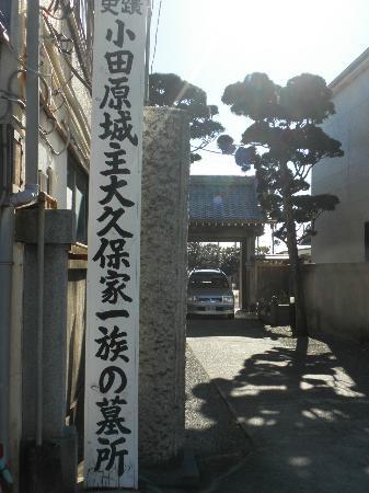 Daikyuji Temple: 木柱
