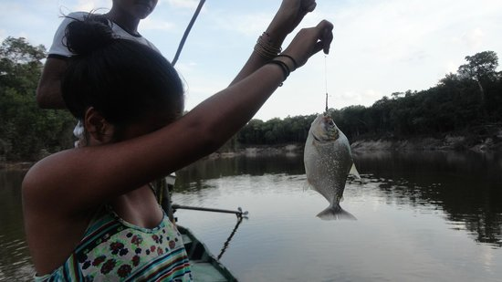Amazon Tupana Lodge: pescando piranha