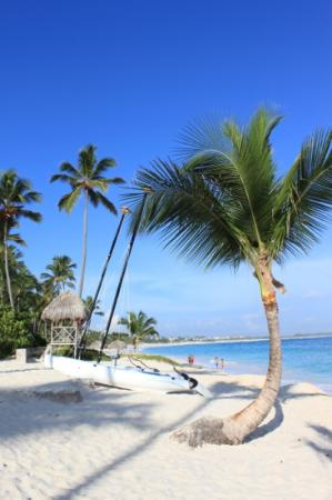 Majestic Colonial Punta Cana: the beach by the hotel