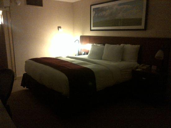 DoubleTree DFW Airport North: Bed