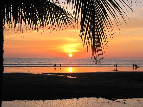 Beach Break Resort : resort view
