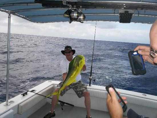 Key West Fishing Connection - Private Charters: bull mahi