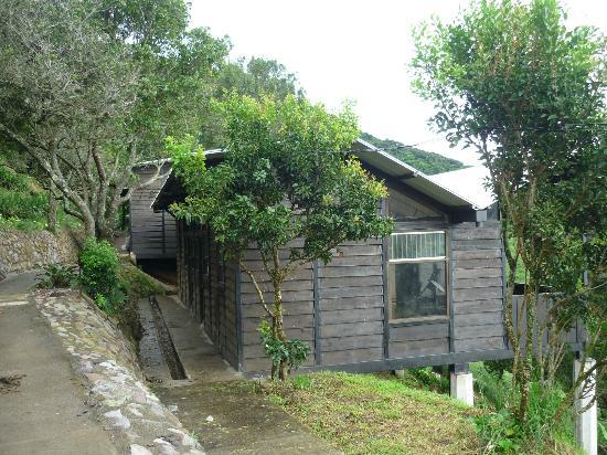 Hotel Alto Palomo: Esta es la cabaña 2, bueno no se ve el balcon pero tiene