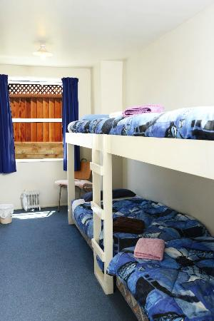 The Fat Cod Backpackers: small dorm