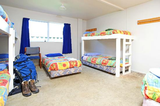 The Fat Cod Backpackers: dorm