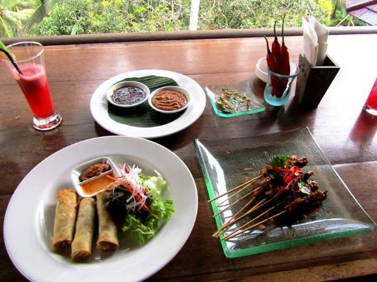 The Kampung Resort Ubud: Satay and Curried Spring Rolls