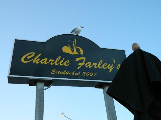 Charley Farley's : How close to the water - ask the seagull