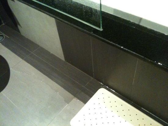 โกลเด้น ทิวลิป แมนดิสัน สวีทส์: Tub leaking - better have lot's of towels available