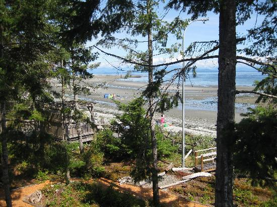 Timberlane Beach Resort: eagle view