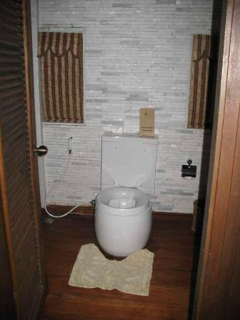 Aureum Palace Resort & Spa Inle: toilet
