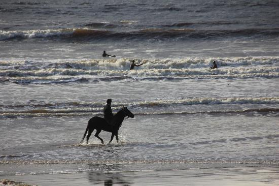 Lahinch Beach: Plage de Lahinch, surf, cheval