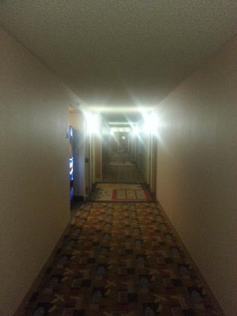 Embassy Suites by Hilton Hotel Santa Clara: Depressing Hallways. I know I'm on a business trip but you don't have to remind me constantly ..