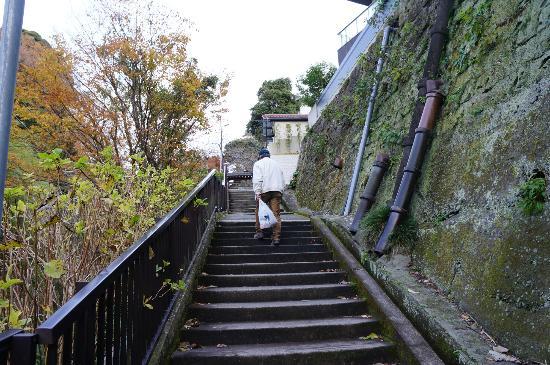 Jojuin Temple: 極楽寺駅からの階段