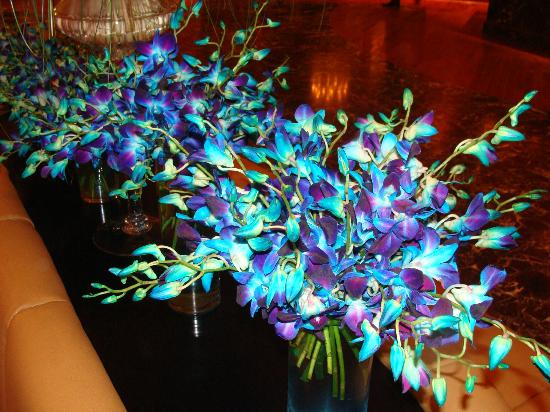 Dubai Marine Beach Resort and Spa: the beautifull flowers arrangments in the lobby .