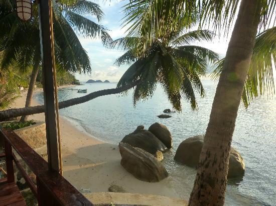 Sunset Cove Resort: Beach in November