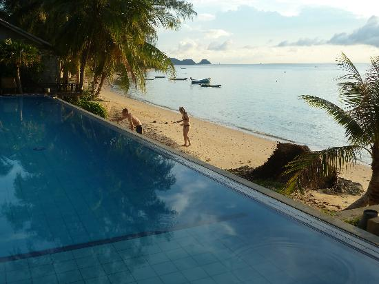 Sunset Cove Resort: Pool & Beach