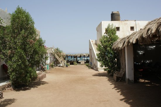 Sindbad Camp: Doorkijkje over het terein naar de zee.
