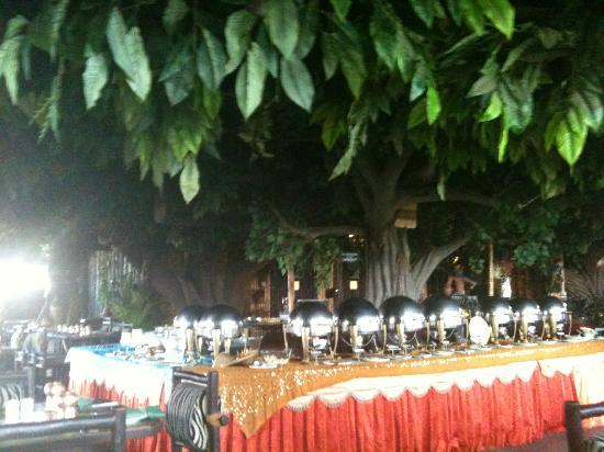 Pai Vista: @ Jungle Restaurant
