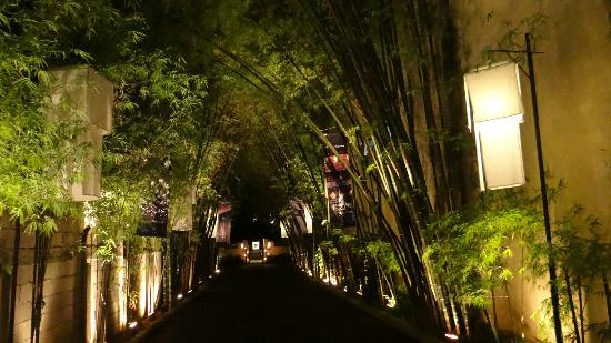 Tamarind Village: Tree lined entrance