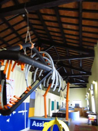 Discovery Station Assisi: subysaurus is 4 meters high