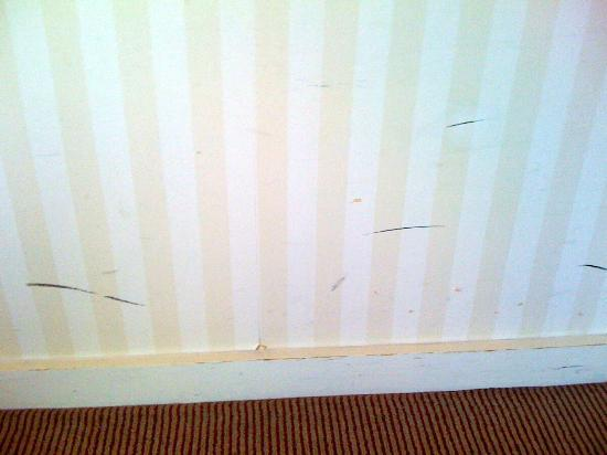 Mercure Banbury Whately Hall Hotel: Black marks and scuffs on the wall