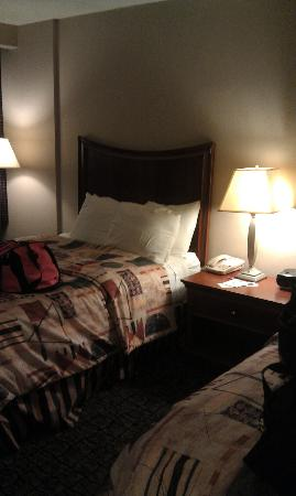 Ramada Ithaca Hotel & Conference Center : room