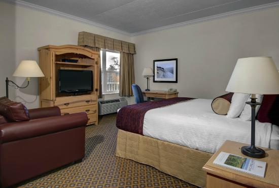 Cherry Tree Inn & Suites : The Mountain Studio