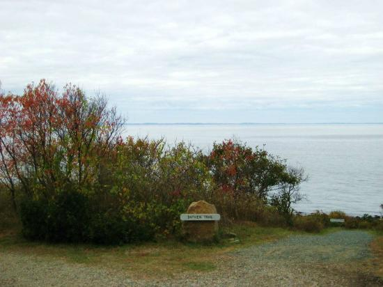Halibut Point State Park: Bayview Trail