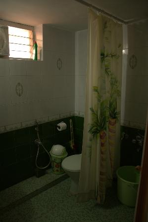 Daniels Homestay : Green bathroom