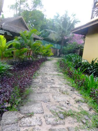The Pool and Palm Villa: Pathway