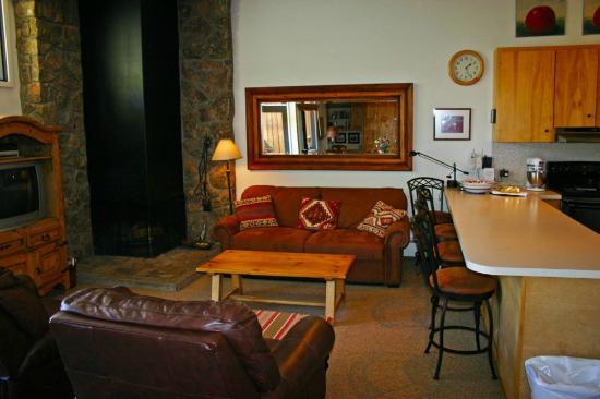 Shadowbrook Condominiums: living room