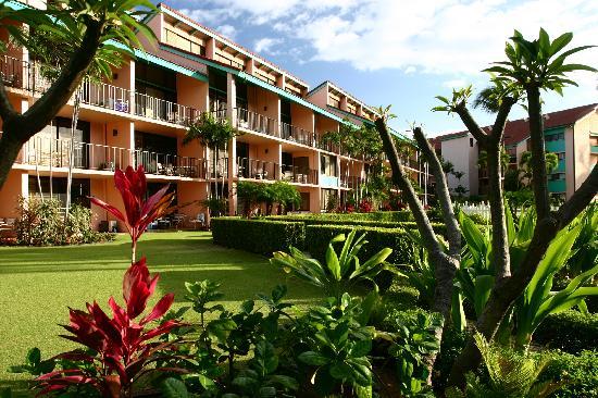 Maui Schooner Resort: Maui Schooner