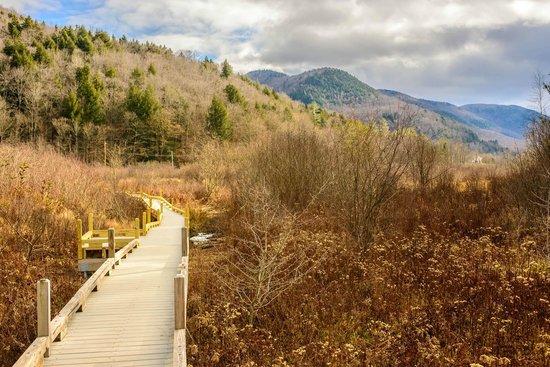 Mountain Valley Retreat B&B : Nature Walk sights