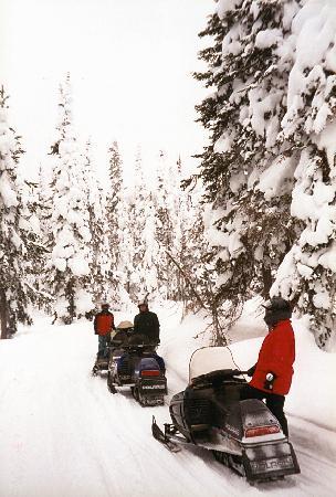 Timbers Condominiums at Island Park: Snowmobiler's Paradise