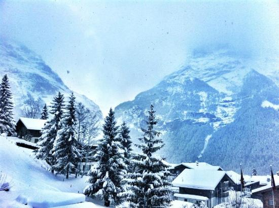Hotel Alpenhof Grindelwald : View from our balcony