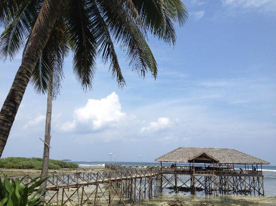 Kesa Cloud 9 Resort: Cloud9