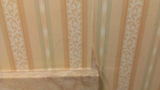 Hyatt at The Bellevue: peeling wallpaper in the bathroom