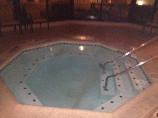 Courtyard Chicago Waukegan/Gurnee: Indoor whirpool